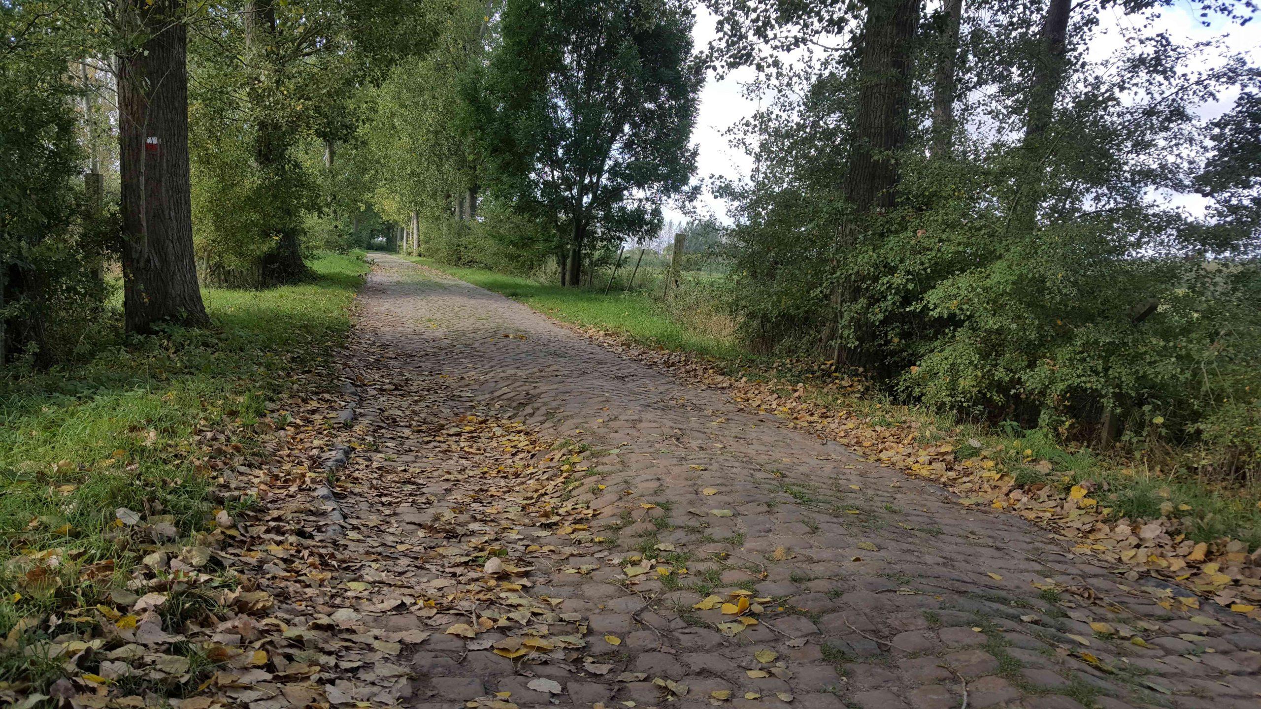 Navigating Belgium